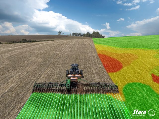 Do you want to make the most out of the soil resources? Make the right choice for planting!